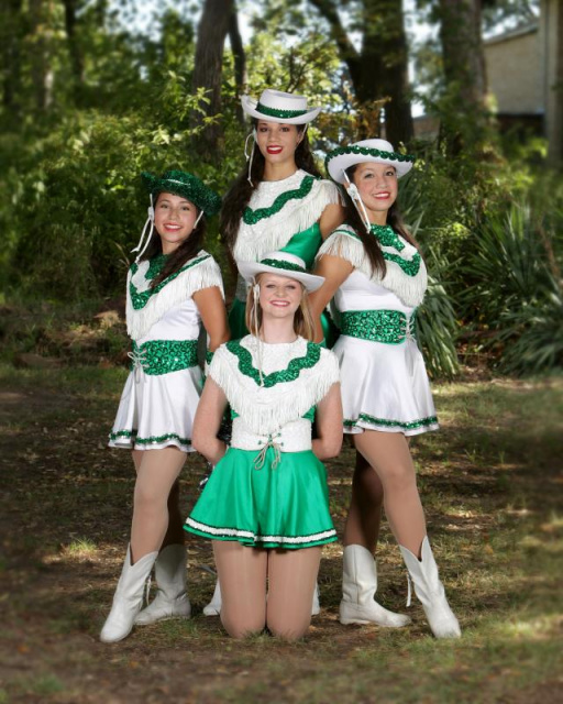2011 Seniors High Steppers