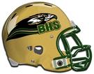 Birdville Hawks helmet