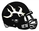 Burleson Elks helmet