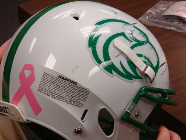 Lake Dallas Falcons supports Susan G. Komen foundation